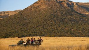 ntshondwe-lodge-game-drive-480